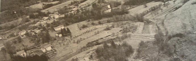 Hišna drevesa na Mali Bukovici nekoč in danes